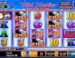 Wild Huskies Online Video Slot